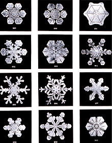 flocons de neige Snowflakes photographiés par Wilson Bentley