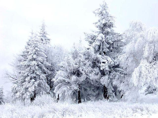 Paysage enneigé au col de Shipka en Bulgarie.